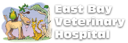 East Bay Veterinary Hospital Logo