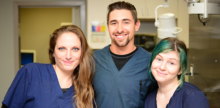 Veterinary staff at East Bay Veterinary Hospital